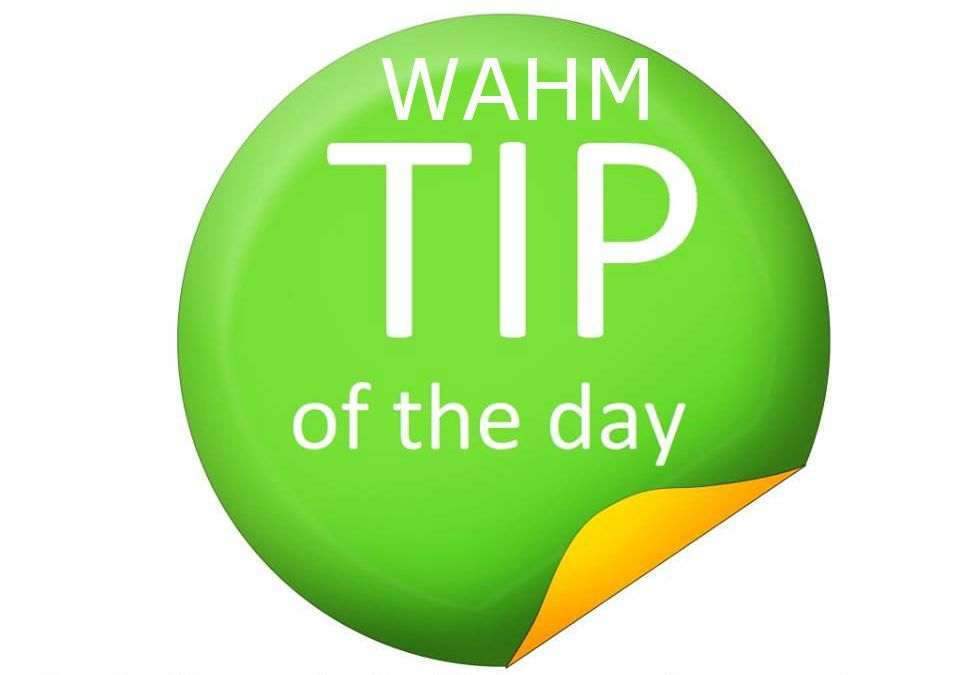 WAHM Tip: Have Goals and a Schedule