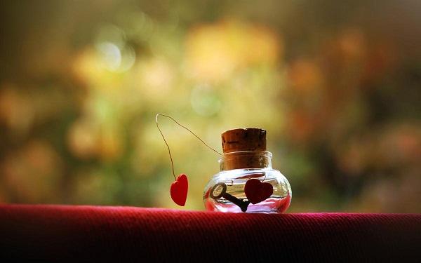 Hạnh phúc không phải lúc nào cũng ngọt ngào...