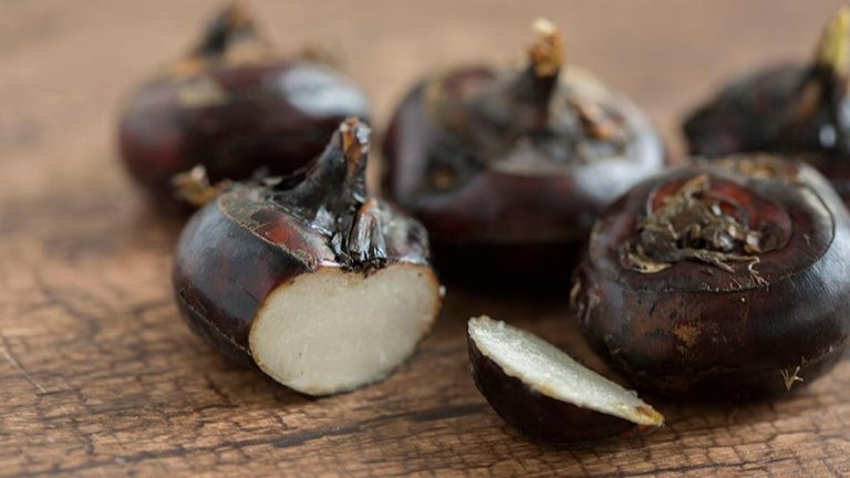 Water Chestnuts Nutrition Facts and 12 Health Benefits