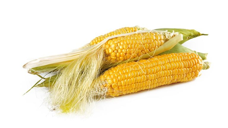 Corn Nutritional Value and 14 Health Benefits