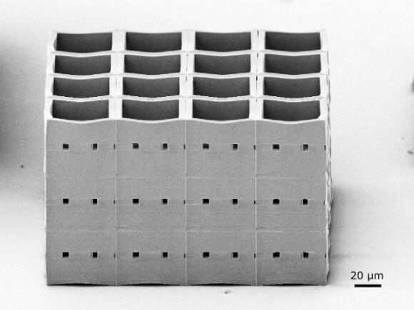 nanoscribe microcell