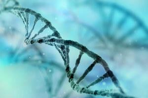 eye-on-cure-algae-genes-reverse-blindness-5
