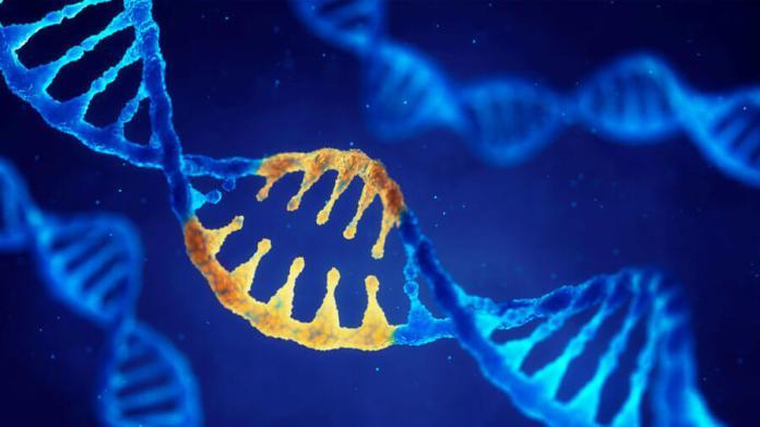 double helix dna modified genes crispr crisproff