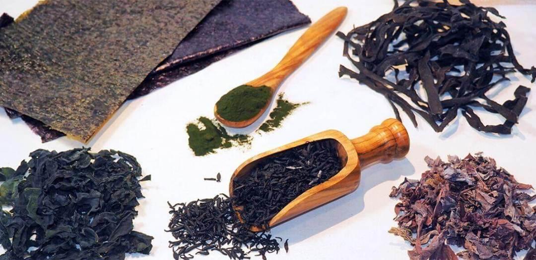 ingredientes para la sopa de algas
