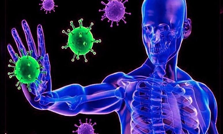 Cómo saber si se cuenta con un sistema inmune fuerte? - Sin Mordaza