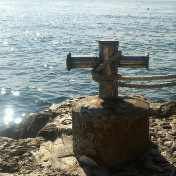 Mitglieder aus Orden und geistlichen Gemeinschaften