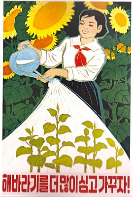 """""""Let's plant and raise even more sunflowers!"""" 