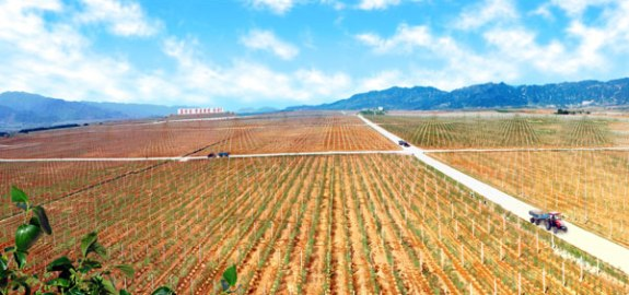 Fields for farming in the DPRK | Image: Rodong Sinmun