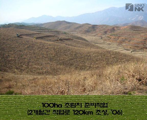 Image of a team preparing the ground for a 100ha chestnut tree plantation at Goseong nr. Mt. Geumgang | Image: Park DongKyun
