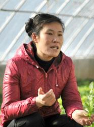 Ji Chol-hyang 17.01.2014