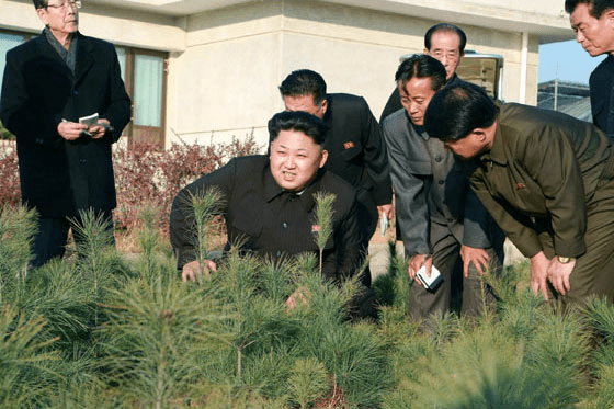 Kim Jong Un visits the Central Tree Nursery Image