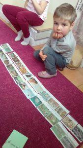 cartes vocabulaire école Montessori