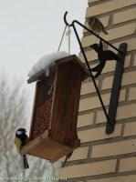 2009-01-05-voederen-vogels
