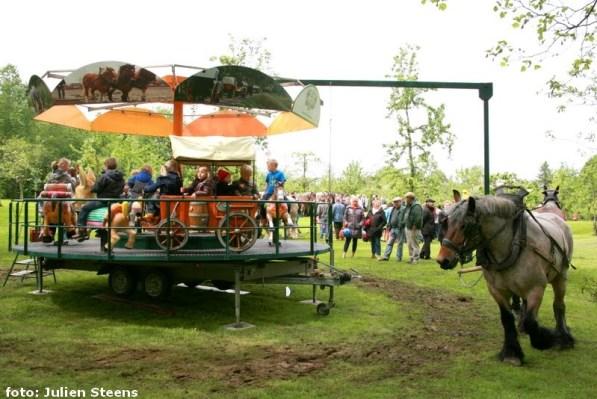 2013-05-26-trekpaarden_Dag-van-het-park_A