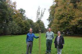 2014-10-21-peerboom-Vlesembeek