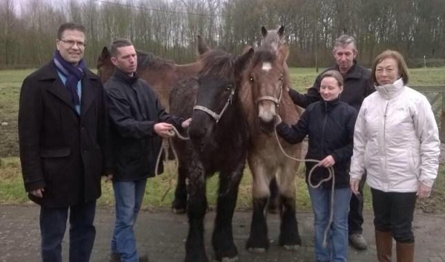 2014-12-23-veulenpremie-trekpaard