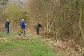 2015-02-15-natuurgebied-Cortenbroeck_02