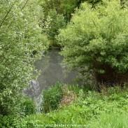 2017-05-09-natuur-water_wijk-Hoge-Paal_04