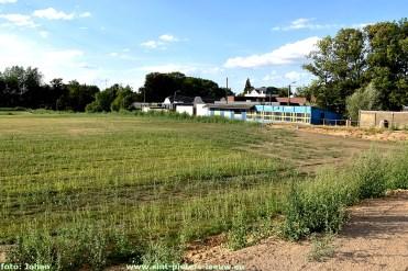 2018-07-31-droogte-nieuw-ingezaaid-veld_SK-Vlezenbeek_01