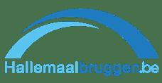 2019-01-04-hallemaalbruggen.be