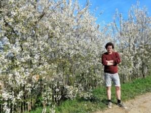 2020-04-17-Pajottenland_landschapsdichter-gezocht