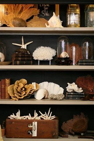 A collection of sea 'finds' works well against the dark painted background.
