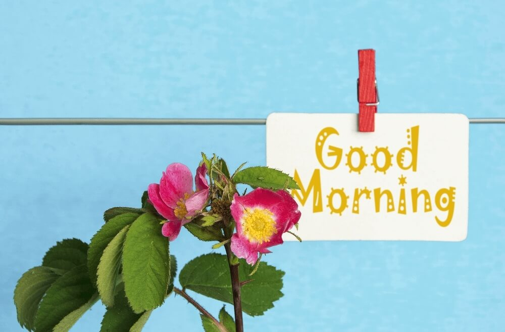 Good morning images with flower and piece of paper