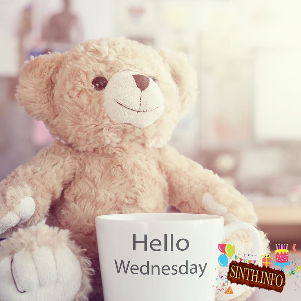 good morning happy wednesday everyone images