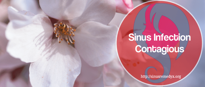 Sinus Infection Contagious