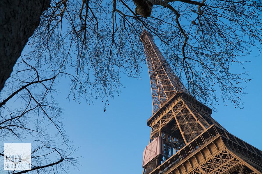 Menara Eiffel Paris, Honeymoon di paris
