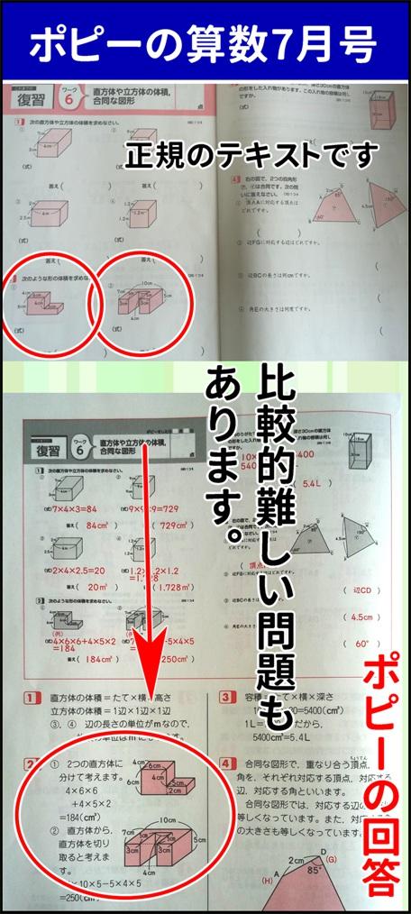 ポピーの算数テキスト7月号の写真