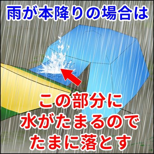 キャノピーの上部には雨が降ると水がたまるのでたまに落としてやるといいと説明しているイラスト
