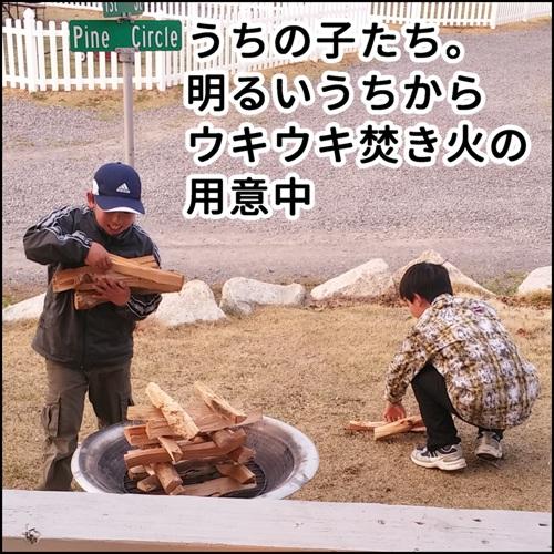 薪を並べて焚き火の準備をしている息子たちの写真