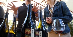 Pinot On The River Healdsburg Wine Walk