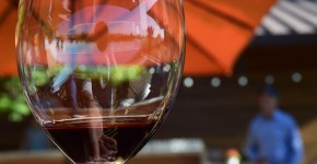 20 Wine Tasting Room How To's & Insider Tips