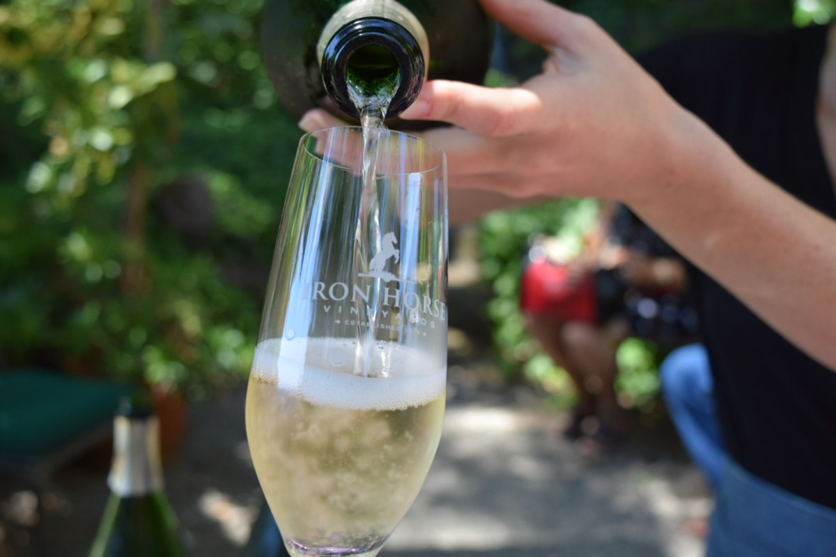 Iron Horse Vineyards Sebastopol, Sonoma History