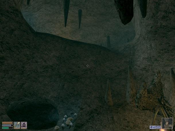 morrowind-ScreenShot 8a