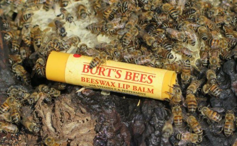 SiraPevida-Burts-Bees-Beeswax