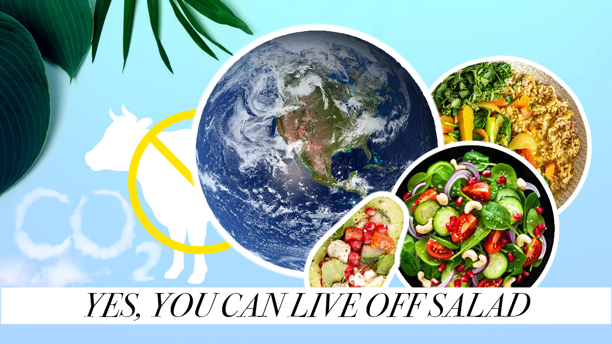 Reduce your meat consumption to help the environment and lead a more healthful life.