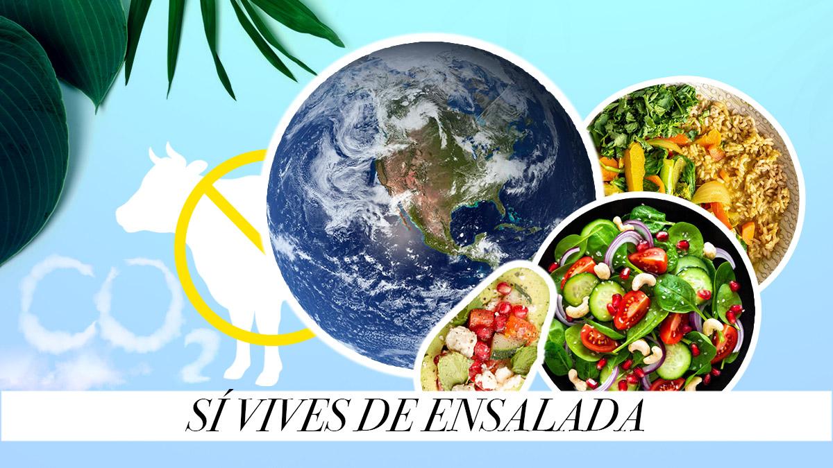 Reduce tu consumo de carne para mejorar el medio ambiente y alcanzar una vida sana.