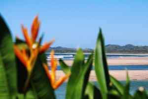 Tamarindo view