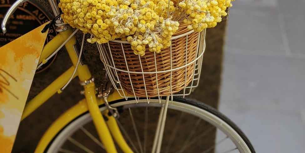 yellow flowers in brown woven basket on bicycle