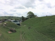 Image of bailey defences at Painscastle in Radnorshire/Powys