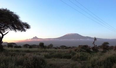 beautiful-kilimanjaro