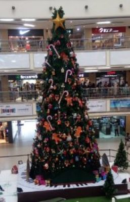 Christmas-Tree-Sirimiri