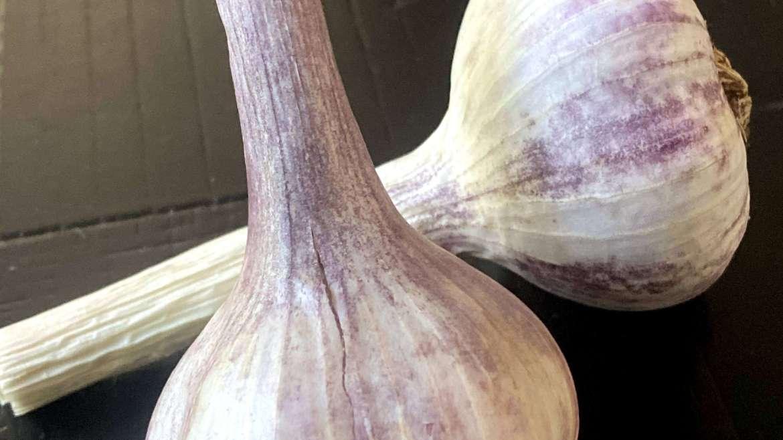 Holistic Garlic