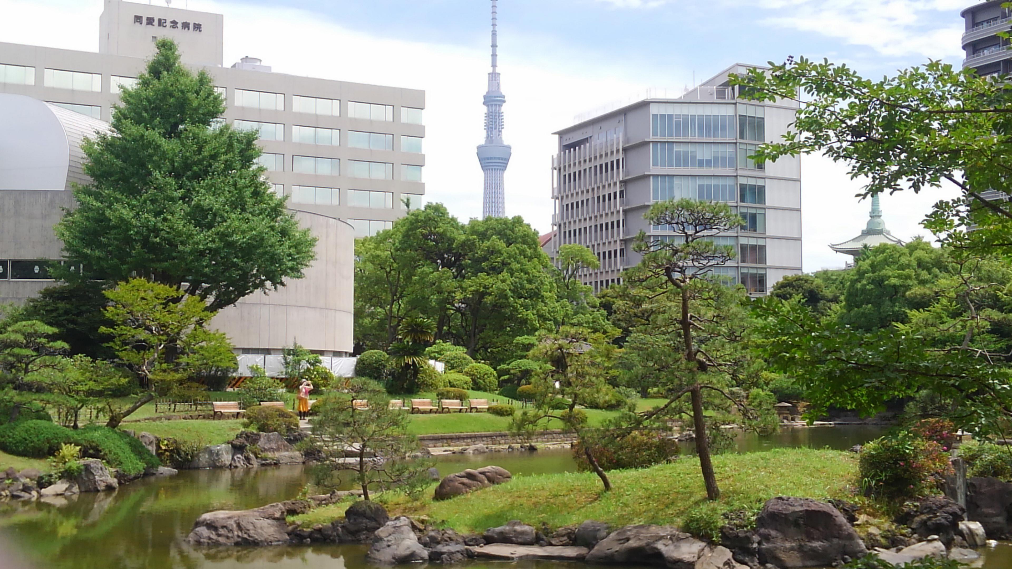 旧安田庭園から見えるスカイツリー