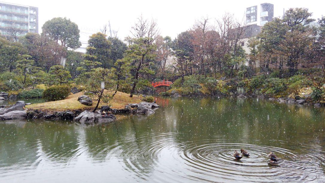 旧安田庭園_雪の池