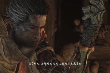 Sekiro: Shadows Die Twice hero
