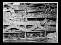 図3 損傷した書籍群(1966年洪水アーカイヴ)